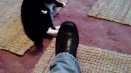 Страшный чёрный ботинок смотреть видео прикол - 0:11