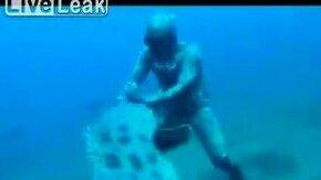 Отобрала рыбу у водолаза смотреть видео прикол - 0:35