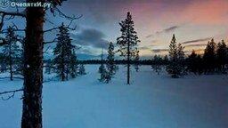 Смотреть Красота нашей жизни и природы