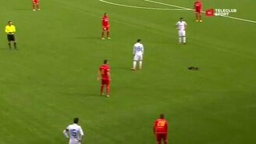 Куница на футбольном поле смотреть видео прикол - 1:42