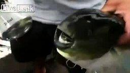 Рыбка-открывалка смотреть видео прикол - 0:26