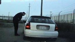 Смотреть Необычный водитель за рулём оказался
