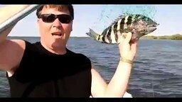 Смотреть Зубастая рыба