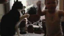 Смотреть Малыш против настырного кота