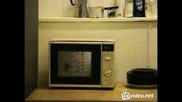 Коробка вина в работающей микроволновке смотреть видео - 1:28