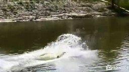 Смотреть Смешной старт на водных лыжах
