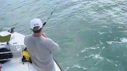 Акулы с крючка сняли рыбу смотреть видео прикол - 1:35