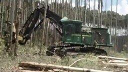 Смотреть Машина, уничтожающая лес