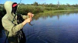Смотреть Вот так вот надо рыбачить!