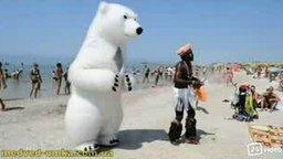 Горячий белый медведь смотреть видео прикол - 2:54