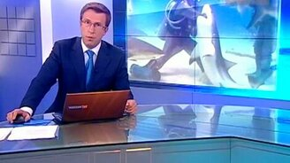 Смотреть Девушка спасла акулу