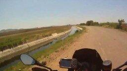 Смотреть Мотоциклист спас телёнка
