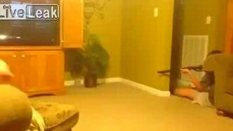 Квартирная охота на мышь смотреть видео прикол - 1:01