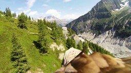 Красота с высоты орлиного полёта смотреть видео - 1:26