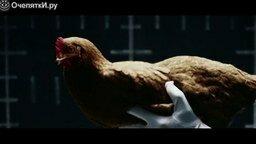 Смотреть Курица - символ Мерседеса