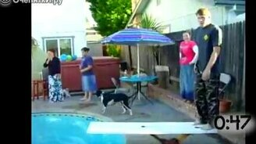 Неудачи с трамплинами в бассейнах смотреть видео прикол - 0:55