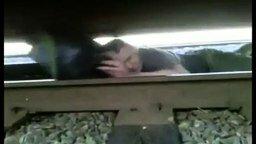 Смотреть Вылез из-под идущего поезда