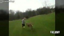 Когда животные атакуют... смотреть видео прикол - 7:52
