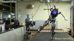 Неполноценный, но всё же прототип человека смотреть видео - 0:57
