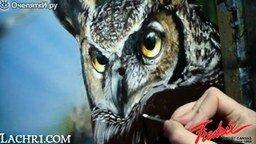 Смотреть Красивый рисунок совы акрилом