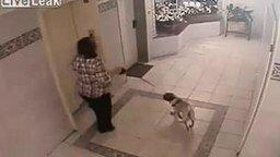 Смотреть Мужик с яйцами и женщина с псом