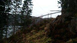 Норвежский способ уничтожить дерево смотреть видео - 0:41