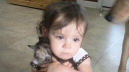 Смотреть Как девочка любит котёнка