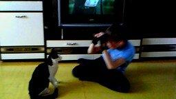 Мальчик против боевого котяры