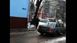 Смотреть Девушка на дереве