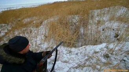 Смотреть Спасение собаки после охоты