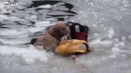 Спасение пса из ледяного плена смотреть видео - 1:38