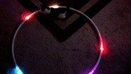 Коты и светящийся хула-хуп смотреть видео прикол - 0:59