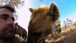 Дружба человека со львами смотреть видео прикол - 13:15
