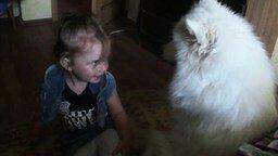 Смотреть Собака заигрывает с девчушкой