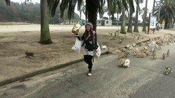 Смотреть Повелительница кроликов