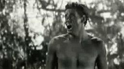 Смотреть Странный крик Тарзана