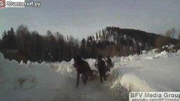 Зимние казусы и приколы смотреть видео прикол - 7:03