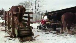 Смотреть Лесопилка на лошадином приводе
