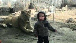 Смотреть Приколы с детьми и животными