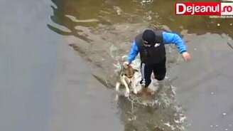 Смотреть Спас собаку из ледяного плена