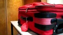 Смотреть Как вскрыть чемодан с замком