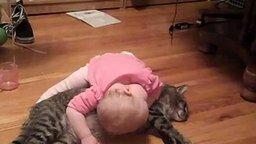 Смотреть Самый терпеливый кот