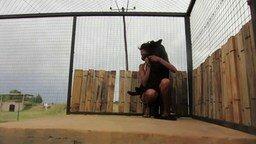 Смотреть Девушка и чёрный леопард