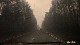 Смотреть Как горит лес