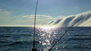 Смотреть Горы из облаков над озером
