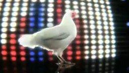 Смотреть Куриное техно