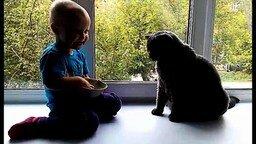Смотреть Девочка кормит кота