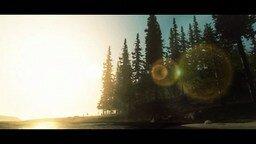 Смотреть Красота хвойного леса
