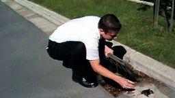 Смотреть Спас утят из канализации