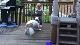 Смотреть Девочка и собака резвятся